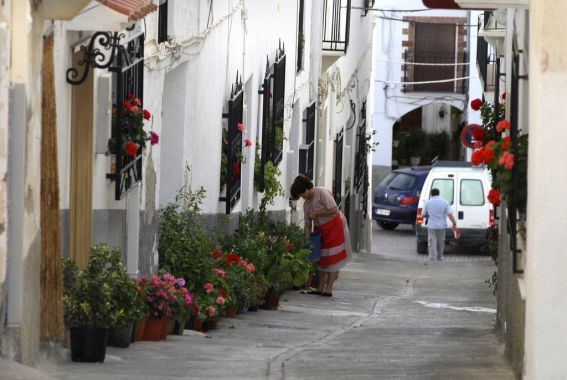 somontin-calle-de-las-flores_254575