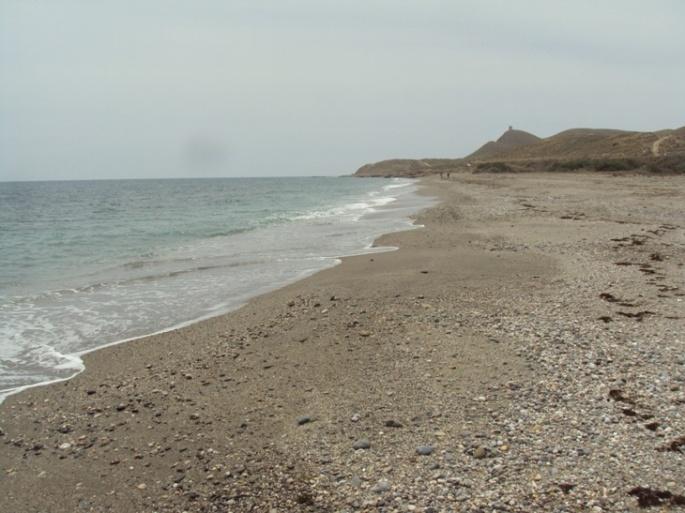 Playa Albarrogico
